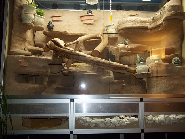 marinesystems terrarium mit unterschrank 175x80x200cm marinesystems. Black Bedroom Furniture Sets. Home Design Ideas