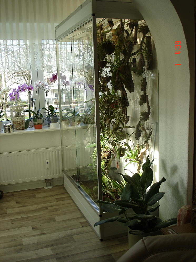 marinesystems orchideen terrarium 140x60x200cm marinesystems. Black Bedroom Furniture Sets. Home Design Ideas