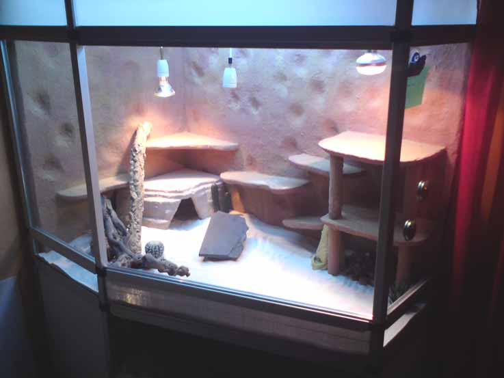 marinesystems terrarium delta mit unterschrank. Black Bedroom Furniture Sets. Home Design Ideas