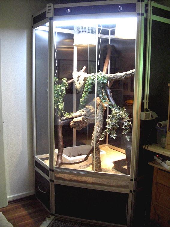 Marinesystems eck terrarium mit unterschrank marinesystems - Terrarium ruckwand selber bauen ...