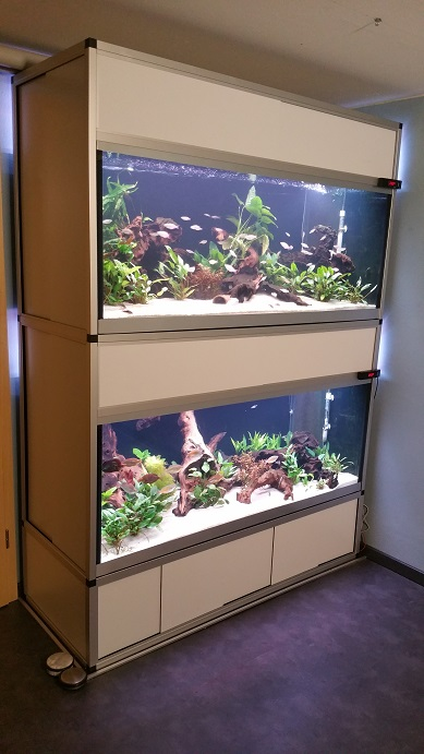 Aquarienregal